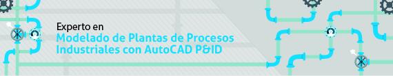Experto en modelado de plantas de procesos industriales con Autocad P&ID